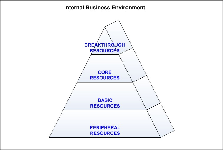 Internal Business Environment - Business Analysis Tools