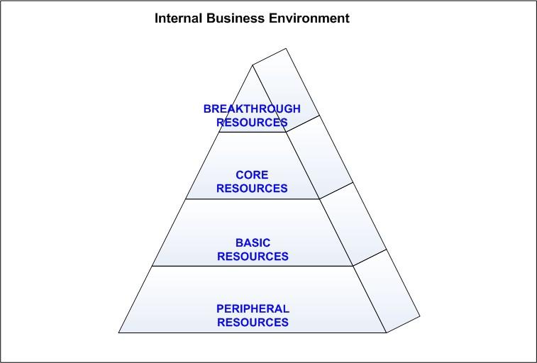 Internal Business Environment - Business Analysis Tools